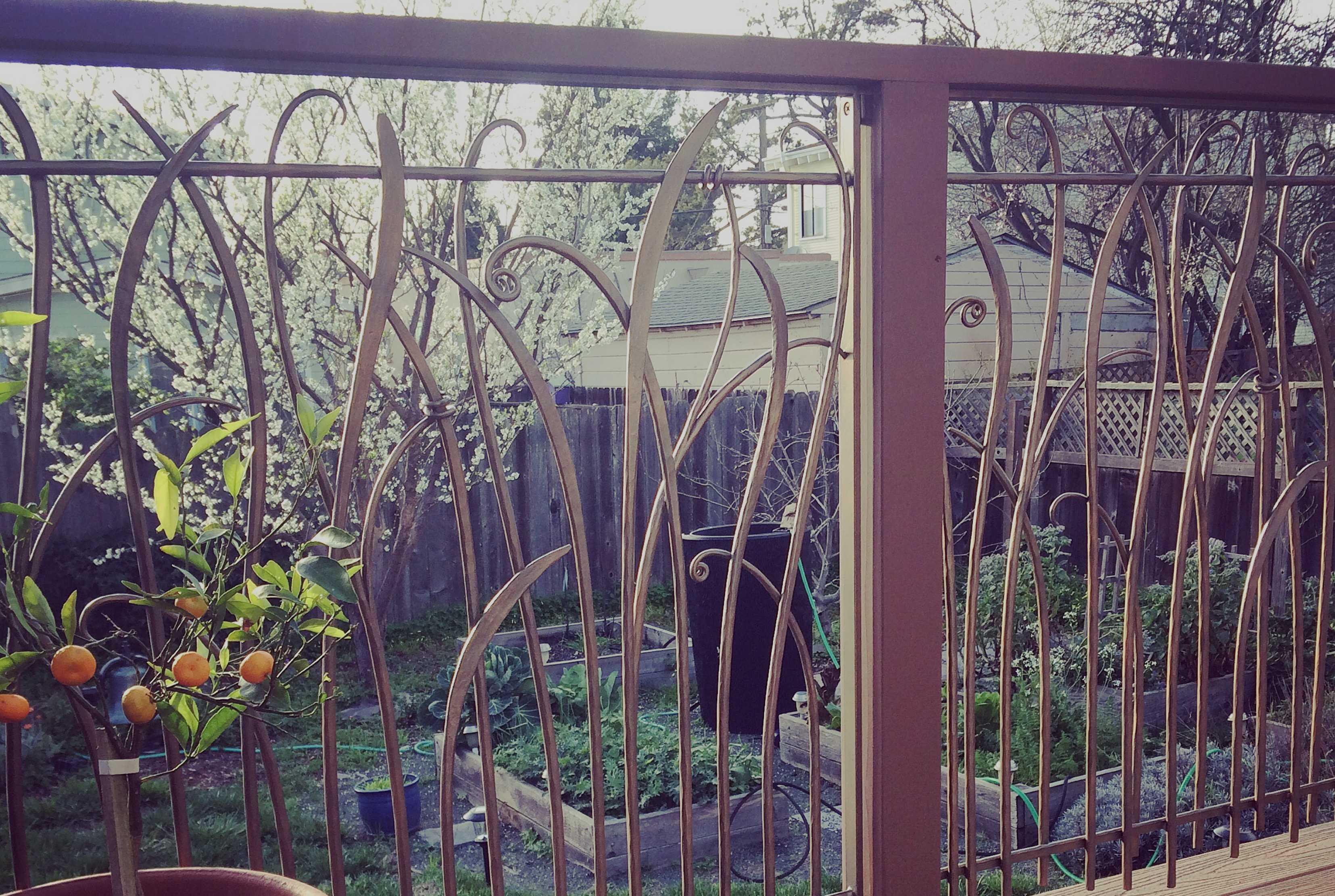 railing-berkeley-hero